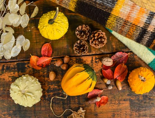3 Active Thanksgiving-Themed Activities